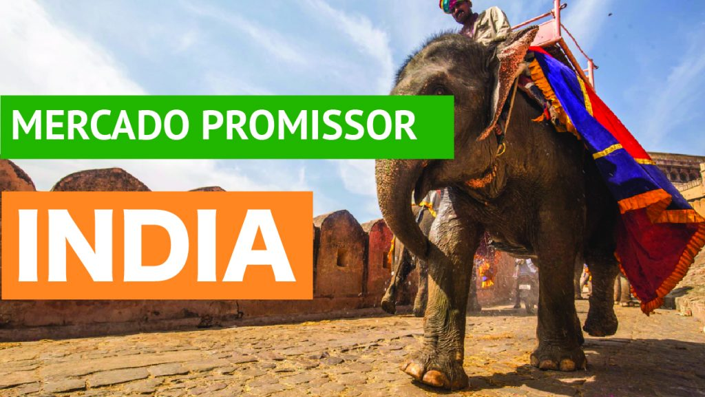 A Índia é um mercado promissor para o Brasil? Índia demonstra ser um mercado promissor para o Brasil