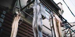 Peixe seco nas ruas antigas de Xangai